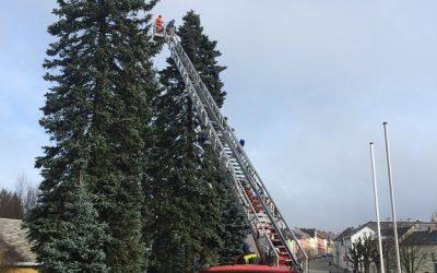 Schönecker Weihnachtsbaum wird geschmückt